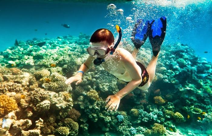Lặn ngắm san hô tại biển Phú Quốc
